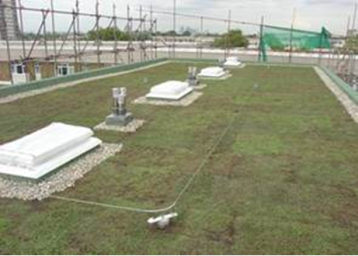 green roof 3